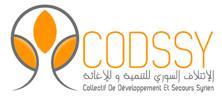LOGO-CODSSY_222