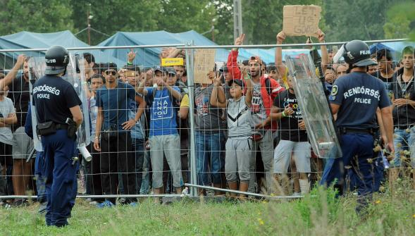 Des réfugiés gardés par des policiers hongrois dans un camp proche de Roszke à la frontière serbe. photo AFP  AFP