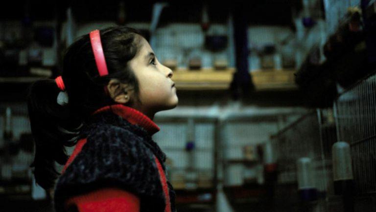 Détail de « La Fille de l'ogre », Syrie, 2014. © Mohamed Lazare Djeddaoui