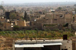 Parcelle de terre cultivée au sein de la ville de Daraya