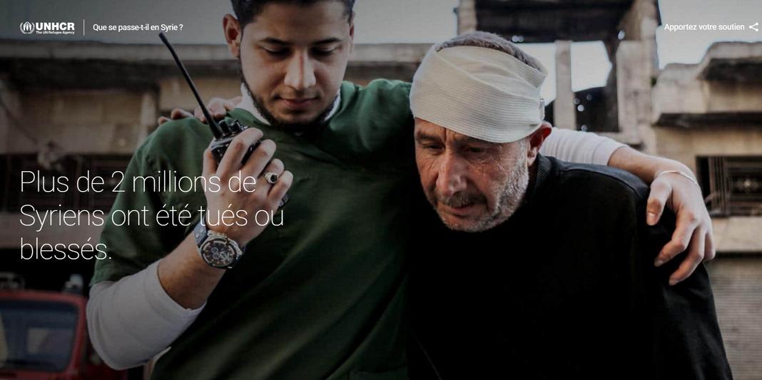 Capture d'écran du site Searching for Syria.